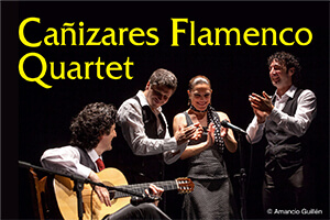 Flamenco Quartet