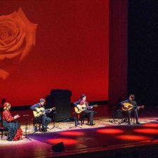 Cañizares Flamenco Quintet | Album fotos gira Japón